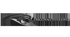 Falcon Consulting Branding